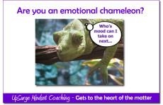UpSurge Coaching Chameleon