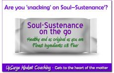 UpSurge Mindset Coaching Soul-Sustenance